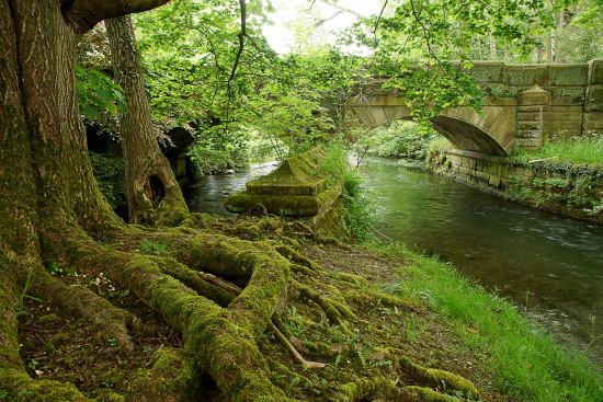 DSC02497-web-(landschapsfotografie-Engeland)