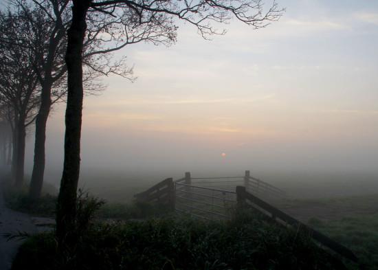 DSC05081-web-(gevecht-zon-tegen-de-mist)
