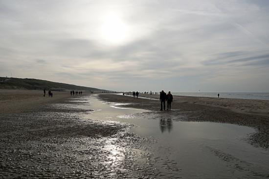 DSC01237-web-(23-11-2014-heerlijke-stranddag)