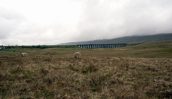 _DSC5743-web-(Ribblehead Viaduct Yorkshire Dales NP)
