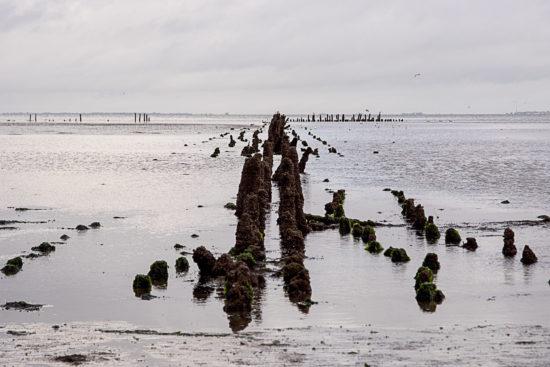 _DSC6385-(Waddenzee-bij-Noordkaap-Groningen)